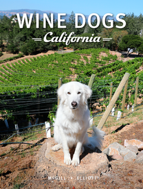 Wine Dogs California: Flambeaux Limited Edition